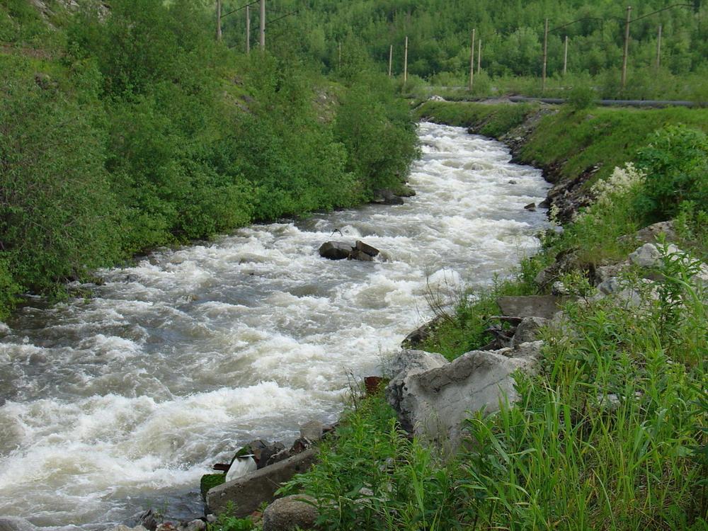 Река. Cheremosh